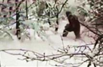 Người tuyết bí ẩn xuất hiện ở Nga