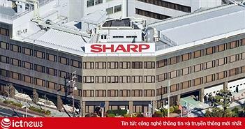 Sharp: Hãng điện tử Nhật đầu tiên sản xuất hàng loạt màn hình OLED