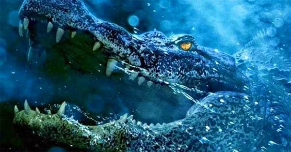 Vì sao cá sấu nuốt mồi dưới nước mà không bị sặc?