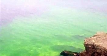Hiện tượng cực hiếm: Nước biển chuyển màu, phát sáng kỳ lạ
