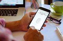 Chính phủ Mỹ đe dọa buộc Apple giao nộp mã nguồn hệ điều hành