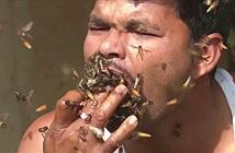 Hãi hùng người đàn ông nhốt ong vào miệng khi lấy mật