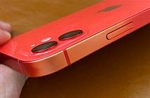 Một số mẫu iPhone 11, iPhone 12, iPhone SE vỏ bị phai màu