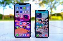 Lộ tin về iPhone 14 khiến chẳng ai còn muốn mua iPhone lúc này