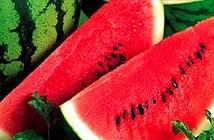 13 điều nên biết khi biết ăn dưa hấu
