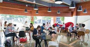Start-up Việt sang Singapore lập nghiệp