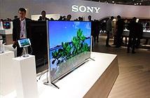Sony lên kế hoạch tích hợp Alexa vào một số dòng TV