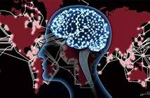 Internet thay đổi cấu trúc và chức năng của não bộ