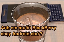 [Hỏi Tinh tế] Anh em muốn một chiếc Blackberry chạy Android?