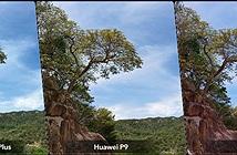 [Hình ảnh] So sánh hình chụp camera Huawei P9, Apple iPhone 6s Plus và LG G5