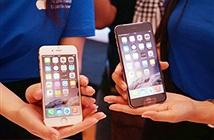 iPhone chính hãng hạ cả triệu đồng, xách tay chững giá