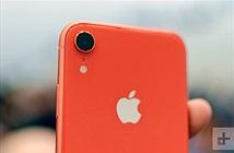 Phiên bản màu san hô của iPhone Xr là màu gì?