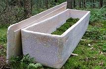 Đám tang đầu tiên dùng quan tài sống làm bằng sợi nấm
