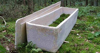 """Đám tang đầu tiên dùng """"quan tài sống"""" làm bằng sợi nấm"""