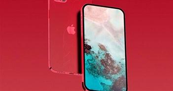 iPhone 12 Pro 4 camera xuất hiện trong video mới, đẹp hút hồn