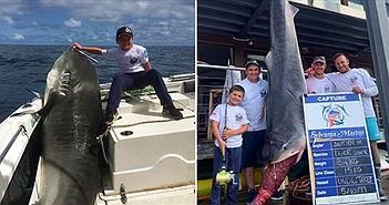 """""""Choáng"""" bắt được cá mập """"khủng"""" nghi thành tinh nặng hơn 314kg"""