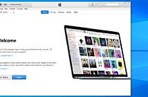 Lỗ hổng phần mềm Apple giúp tin tặc đánh chiếm Windows PC