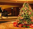 Tại sao ngày Noel - Giáng sinh lại dùng cây thông mà không phải là cây khác?