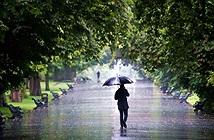Các nhà khoa học Harvard hóa giải nỗi oan nghìn năm cho thời tiết