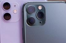 Apple đau đớn với doanh số bán iPhone giảm kỷ lục tại Trung Quốc