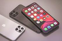 Tấm nền OLED cho iPhone năm 2021 vẫn do Samsung cung cấp