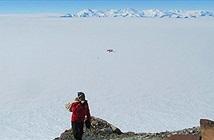 Khu rừng rậm từng che phủ Nam Cực 280 triệu năm trước nói lên điều gì?