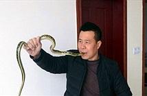 Lạnh gáy với dị nhân nuốt rắn sống, xỏ rắn qua lỗ mũi