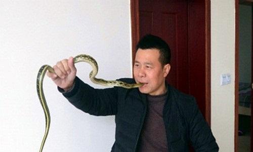 """Lạnh gáy với """"dị nhân"""" nuốt rắn sống, xỏ rắn qua lỗ mũi"""