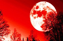 Siêu trăng máu hiếm gặp sẽ xảy ra vào cuối tháng 1?