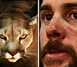 """Chạy bộ trên núi gặp sư tử, người đàn ông hạ gục """"chúa sơn lâm"""" trong 3 phút"""