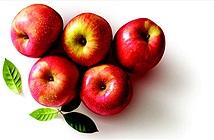 Các thực phẩm giúp ngăn ngừa ung thư