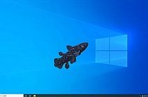 Ứng dụng hay ho giúp nuôi cá ảo trên màn hình máy tính