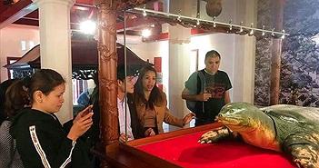 Bí mật về tủ kính siêu hiện đại đặt cụ rùa Hồ Gươm