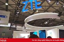 Mỹ điều tra ZTE tội danh hối lộ, cổ phiếu lập tức giảm 23%