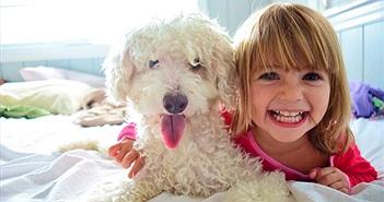 Khoa học: Nuôi thú có lông giúp trẻ giảm nguy cơ béo phì và dị ứng
