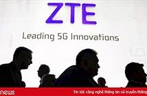 Mỹ cấm ZTE mua chip Qualcomm trong vòng 7 năm