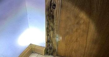 Sàn nhà, cửa chuyển màu đen... chủ nhà phát hiện điều kinh dị đã muộn