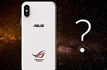 Asus xác nhận tham gia cuộc chơi smartphone chơi game