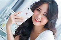 Apple mở đường iPhone SE Plus khi khai tử iPhone 8 Plus?