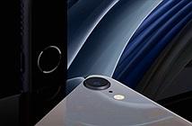 Lý do nào khiến camera iPhone SE 2020 chụp đẹp đến vậy?