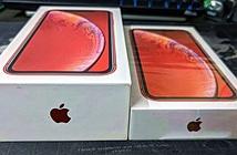 Apple tuyên bố tiết kiệm 861.000 tấn kim loại nhờ không tặng củ sạc cho iPhone