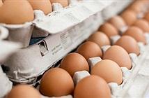 Trứng không phải kẻ thù đối với người mắc bệnh tiểu đường