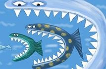 """Chủ tịch CMC: doanh nghiệp lớn khó trụ vững nếu cạnh tranh kiểu """"nuốt cá bé"""""""