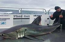 """Câu được cá mập """"quái vật"""" to nhất nước Anh, không thể kéo lên thuyền"""