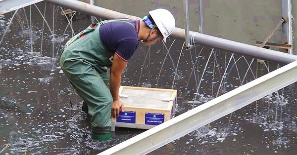 """Clip: """"Bảo bối"""" xử lý bùn sông Tô Lịch thành khí CO2 và nước bằng công nghệ Nhật"""