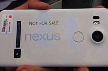 Rò rỉ nguyên mẫu Google Nexus 5 (2015)