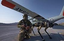 Không quân Mỹ có chó máy gác sân bay