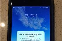 Apple đưa ra giải pháp khi nút home trên iPhone 7 gặp vấn đề