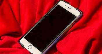 """Mẫu vỏ bảo vệ này còn """"chát"""" hơn cả chiếc iPhone đắt nhất"""