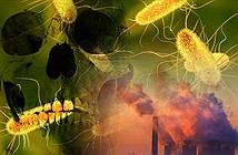 Loại vi khuẩn có thể giết trăm triệu người sắp thoát ra từ Bắc Cực?